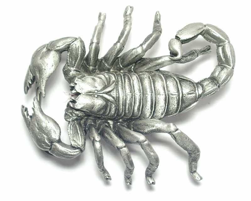 sehr bekannt herren neue Stile Guertelschnalle orig. Great American Buckle als Skorpion, silberfarbig